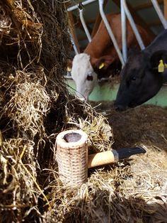 corncob tuesday  #pipe#smokingthepipe#tobacco#briarbroom#tasteoftobacco#corncob#missourimeerschaum#dagner#poker#collectingpipes#cows#countrylife#farm#springday#placestobe#
