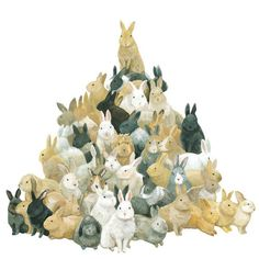 bunny mountain ...