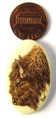 Buffalo (Bison) Pyrography (Woodburning) on Bone - Miniature Art (Sue Walters)