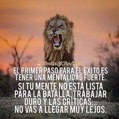 Como todo en esta vida, la actitud mental es lo principal para asumir nuestra decisiones, tirar para adelante y a por todas. www.carlosybarbara.com/c3
