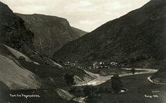 Sogn og Fjordane fylke Aurland kommune Parti fra Flaamsdalen Utg CAE Norge tidlig 1900-tallet