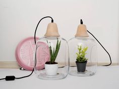 Milo lamp by lightovo :D #inspiration #Deco #greenhouse #Garden #Loveit