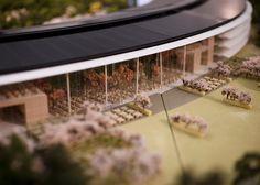 Apple campus model. Amazing level of details.