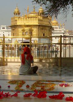 Golden Temple at Amritsar Morning