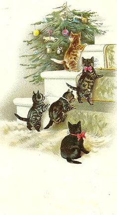 Vintage kittens contemplate their Christmas tree. Cats