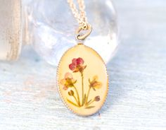 Encased Beauty  Dried Flowers in Resin Case Necklace by Meanglean