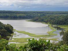 Réserve de Faune Douala Edea