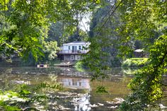 View along the Brandywine Creek from Shaw's Bridge Park.