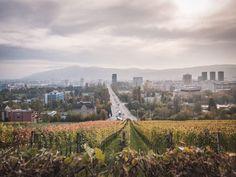 Zürich Geheimtipps: 15 Insider Tipps, welche garantiert nicht jeder kennt Monument Valley, Vineyard, Earth, Nature, Travel, Outdoor, Pictures, Hush Hush, Road Trip Destinations