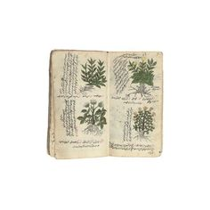 A TREATISE ON HERBAL MEDICINE AND OTHER WORKS OTTOMAN TURKEY, SECOND... ❤ liked on Polyvore featuring books, fillers, backgrounds, fillers - green, other and magazine