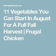 11 Vegetables You Can Start In August For A Full Fall Harvest | Frugal Chicken