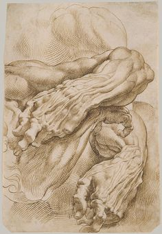 Anatomical Studies: A Left Forearm in Two Positions and a Right Forearm, 1600–1608  Peter Paul Rubens (Flemish, 1577–1640)  Drawing, pen and brown ink
