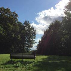 Har været med @shinelikeastarunivers på gåtur i parken... her kunne man da godt sidde på en bænk når man blir gammel #webshop #påtur #nårjegblirgammel #helsingør #dejligtvejr