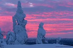 Sky is crying. Sunset yesterday in Pallas-Ylläs National park. Great Photos, Cool Pictures, Midnight Sun, Winter Beauty, Finland, Winter Wonderland, Mount Rushmore, Natural Beauty, Sunrise
