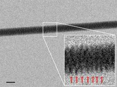 It's the most famous corkscrew in history. Now an electron microscope has captured the famous Watson-Crick double helix in all its glory, by imaging threads of DNA resting on a silicon bed of nails. The technique will let researchers see how proteins, RNA and other biomolecules interact with DNA.