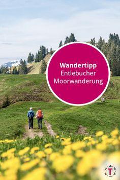 Swiss Alps Skiing, Entlebucher, Baumgarten, Wanderlust, Winter Destinations, Lake Geneva, Zermatt, Medieval Town, Winter Travel