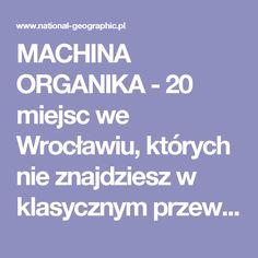 MACHINA ORGANIKA - 20 miejsc we Wrocławiu, których nie znajdziesz w klasycznym przewodniku
