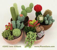 felt+cactus+pattern | ... : cactus plants cacti succulent pattern crochet amigurumi succulents