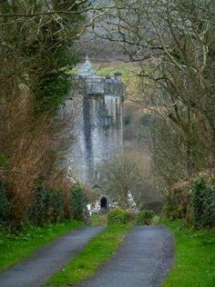 Newtown Castle, nr. Ballyvaughan, Co. Clare....our school!