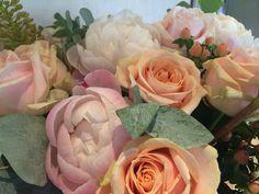 Perzik, zacht roze en witte bloemen
