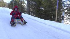 Fun sledding to down a hilly road in Liechtenstein