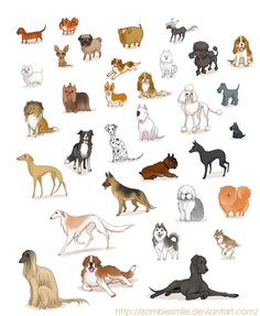 Anatoref Idee In 2019 Dog Art Dog Illustration Dogs Animal Drawings, Cute Drawings, Drawings Of Dogs, Artwork Drawings, Dog Illustration, Illustrations, Animals And Pets, Cute Animals, Cartoon Dog