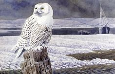 Charles Tunnicliffe  was probably most famous for his depiction of birds....