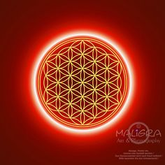floweroflife Sacred Art, Flower Of Life, Crystal Grid, Optical Illusions, Sacred Geometry, Crystals, Wallpaper, Consciousness, Universe