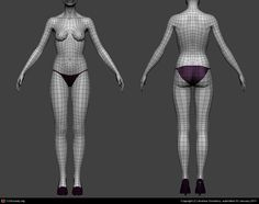 Female Template Body Wireframe by Andrea Giordano | 3D | CGSociety