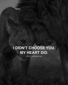 I didn't choose you .My heart did .