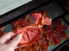 Dehydrated Tomato Peels used to Make Homemade Tomato Paste Tomato Paste Uses, Tomato Paste Recipe, Homemade Tomato Paste, Homemade Egg Noodles, Dehydrator Recipes, Food Processor Recipes, Canning Stewed Tomatoes, Tomato Jam, How To Peel Tomatoes