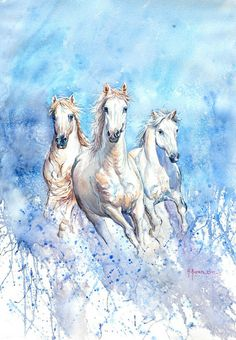 Camargue #watercolor #horse #painting - 56 x 76