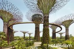 """Five+Destinations+That+Are+Changing+The+Meaning+Of+""""Green+City"""""""