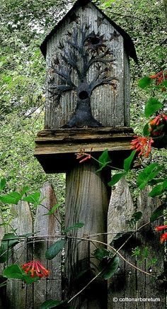 Birdhouse on a tree trunk