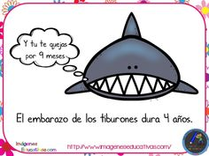 Datos curiosos de animales que no conocías - Imagenes Educativas Say Say Say, Shark Facts, Curious Facts, Animal Projects, Teaching Spanish, Fun Facts, Homeschool, Did You Know, Knowledge