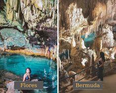 Gua Rangko di Flores = Gua Crystal di Bermuda #judionline #bandarjudi #bolatangkas #8tangkas #jackpot Gua, Painting, Flowers, Painting Art, Paintings, Painted Canvas, Drawings