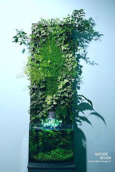 http://www.naturedesign.fr/gallerie/  (736×1099)