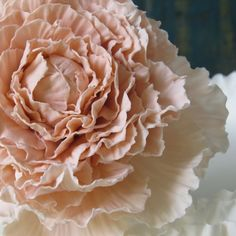 Voluptuous sugar peony- all hand crafted by Maggie from Florabunda & Cake.  Contact me if you would like to buy one for your special cake.