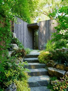 two hillside cabins in the trees mill valley california feldman architecture