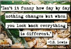 C.S. Lewis Changes Quote Magnet or Pocket Mirror (no.312) 5,000 Scrapbook Titles & Quotes, including words, sayings, phrases, captions, & idea's.