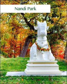 Mahanandi Park
