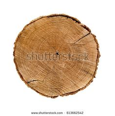 Dark brown circular piece of wood cross section with tree ring texture pattern and cracks isolated on white background. Cross Section, Wood Crosses, House Roof, Textures Patterns, Tree Stump, Stock Photos, Vectors, Roof Ideas, Dark Brown