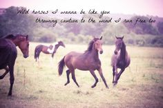 Wish I could recklessly love, like I'm longing to. I want to run with the wild horses. <3