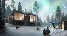 WOW! Arctic TreeHouse Hotel — Laponie, Rovaniemi, Finlande, Finland