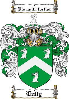 Tully Coat of Arms Tully Family Crest Instant Download - for sale, $7.99 at Scubbly