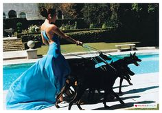 jennifer lopez in gorgeous blue dress walling dogs on pretty turquoise leashes
