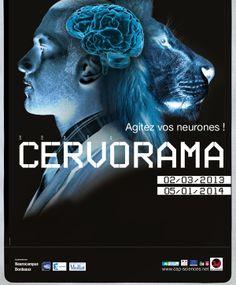 Exposition Cervorama. neurosciences Bordeaux, technologie, cerveau, sciences, neurodégénérative, aquitaine,