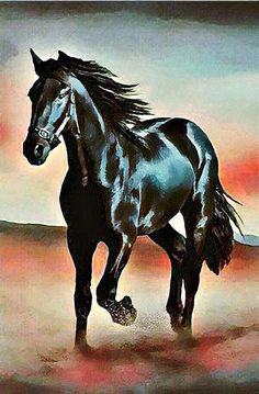 A 77 pieces jigsaw puzzle from Jigidi Beautiful Horse Pictures, Beautiful Arabian Horses, Most Beautiful Horses, Pretty Horses, Horse Love, Animals Beautiful, Silhouette Painting, Horse Silhouette, Horse Canvas Painting