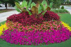 Layering Backyard Garden Landscaping Tips Landscaping Tips, Front Yard Landscaping, Outdoor Landscaping, Beautiful Gardens, Beautiful Flowers, Flower Bed Designs, Commercial Landscaping, Colorful Garden, Garden Planning