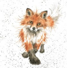 Wrendale Designs Country Set Greeting Card NEW The Foxtrot Fox Animal Paintings, Animal Drawings, Art Drawings, Watercolor Animals, Watercolor Art, Art Fox, Fuchs Baby, Wrendale Designs, Motifs Animal